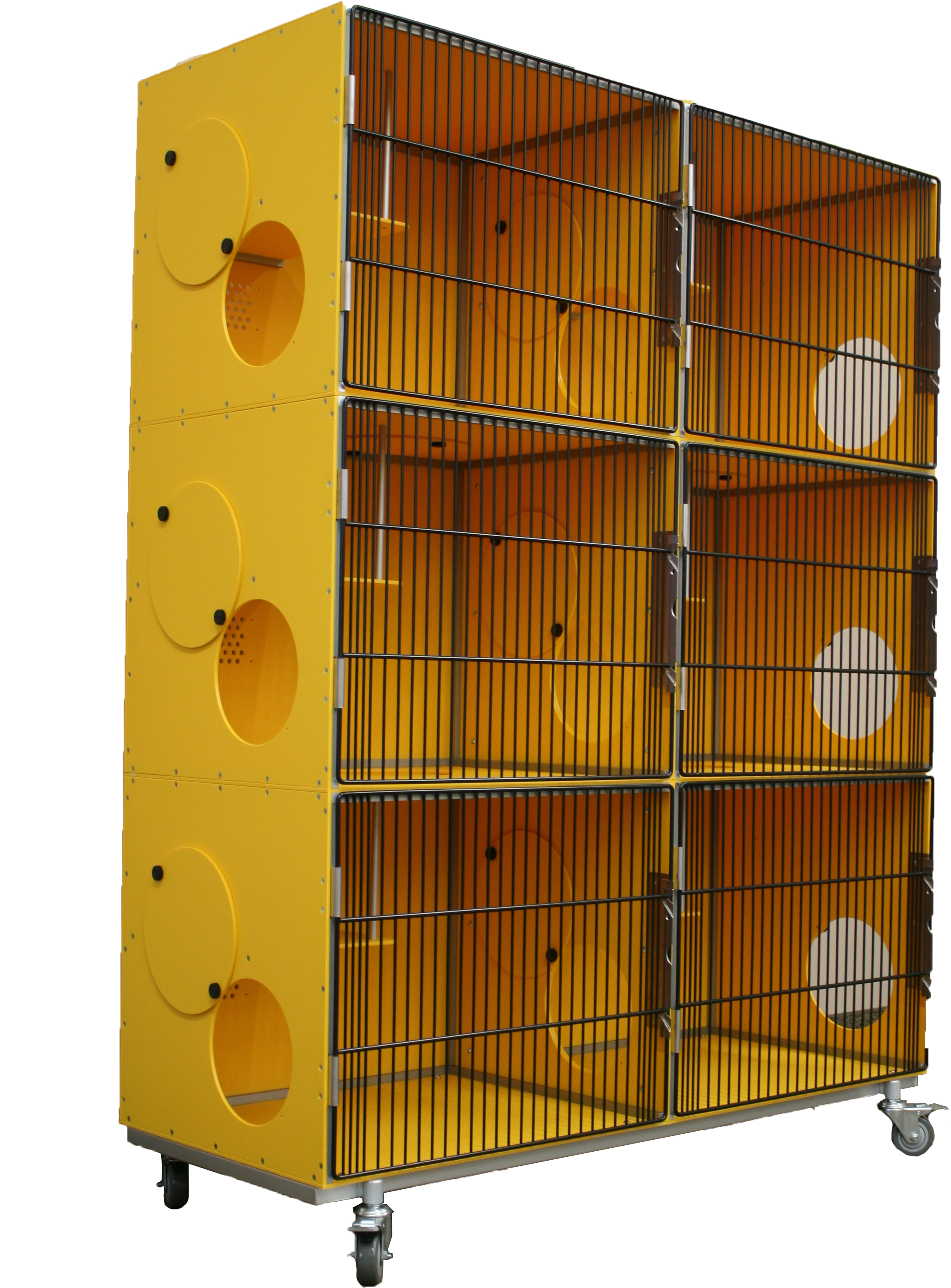 Yellow Cat Condows with Black Full Grille